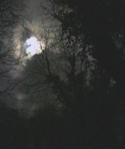 Moonlight, Lamorna 30 12 14